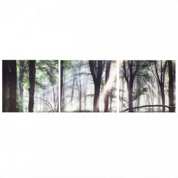 Cuadro Triplico bosque con vidrio