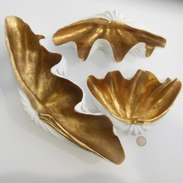 Concha dorada y blanca  tamaño grande 346x15cms